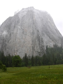 El Capitan rising above a Yosemite meadow.
