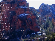 Desert colors of red and yellow sandstone, pines, and snow in Oak CreekCanyon.