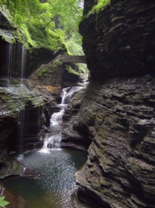 Stream, waterfall, pools, and lush green foliage at Watkins Glen State Park.