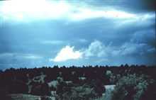 Storm clouds over pinon pines