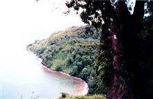 A view from the hills of Isla Cocos.