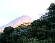 Arenal Volcano seen above the rain forest.
