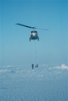 Weighing a polar bear with a NOAA helicopter.