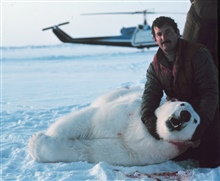 Lieutenant Eric Davis, Bell UH-1M helicopter pilot, supporting sedated polarbear's head, after placing an identification tag in its ear.
