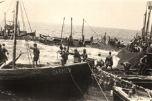 Tuna trap fishing at Sancti Petri. Note the large tuna landed in the boat CARME CARMEN.