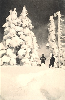 Snow on trees at the Paradise Inn, Mount Rainier, Washington.  In the winter of 1916-1917, 789.5 inches of snow fell at Paradise Inn.  At the time of the photo, the snow was approximately 27 feet deep.In:  Monthly Weather Review, July 1918, p. 330.