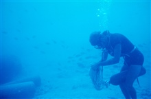 Diver disentangling rope from regulator while getting ready to laya transect line.
