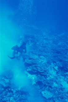 Diver near seafloor with murky disturbed waters