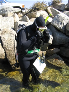 Scientific diver Lisa Wooninck prepares for a diveat Point Lobos State Reserve.