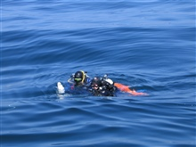 NOAA divers return from a dive in the Stellwagen Bank National Marine Sanctuary