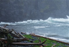 A surf-swept cove with logs pushed high up the rocky shore indicatingthe violence of North Pacific winter storms.