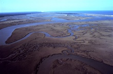 North Inlet - Winyah Bay National Estuarine Research Reserve.Aerial view of meandering tidal creeks and extensive pristine marshes in NorthInlet Estuary.
