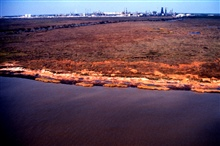 Grand Bay National Estuarine Research Reserve.Northwest over Mississippi Sound showing eroding shoreline and high marsh, Point aux Chenes, southwestern portion of reserve.  Taken during LSU aerial shoreline survey of October 1998.