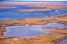Grand Bay National Estuarine Research Reserve.North from Rigolets showing shallow marsh ponds and Indian shell midden along Crooked Bayou.   LSU aerial shoreline survey of October 1998.