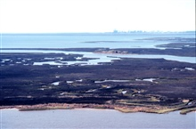 Grand Bay National Estuarine Research Reserve.West from Grand Bay showing large vegetated shell midden in center, Point aux Chenes Bay, and Chevron sour-oil refinery five miles in background on western border of NERR. LSU aerial shoreline survey of O