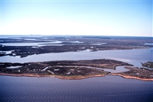 Grand Bay National Estuarine Research Reserve.Expansive Juncus and high marsh vegetation and maritime pine forest islands innorthern portion of NERR. LSU aerial shoreline survey of October 1998.