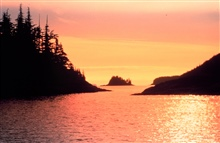 A golden glow suffuses the atmosphere while reflecting off the waters ofPrince William Sound at sunset