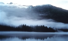 Fog and mist reminiscent of an impressionist painting overlying waters, trees,mountain valleys of Prince William Sound