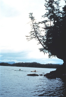 Kayakers passing a rocky point