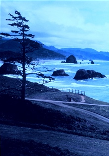 Looking south at Ecola State Park, about 5 miles south of Seaside.
