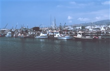 Fishing vessels in port at Terminal Island, Los Angeles area