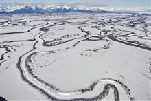 An aerial view of meandering frozen channels of the Copper Riverreminiscent of Nazca Lines.