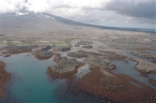 Aerial photograph. Islets of volcanic boulders at low tide on Augustine Volcano. Tidal channels and brownish red algae covered rocks.