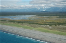 Aerial photograph.  Looking across the coastal plain at Dry Bay south of Yakutattowards the coast ranges. Dry Bay is part of the estuary system of the AlsekRiver.