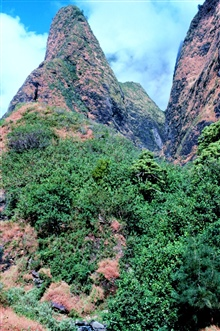 View of the Iao Needle in the West Maui Mountains
