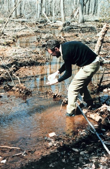 Collecting water samples for acid rain analysis in a Chesapeake wetlandtributary.