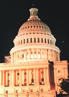 Dome of the U. S. Capitol Building.