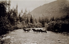 Fording a stream.Triangulation party of William M. Scaife.