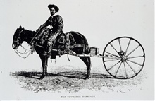 Army surveyor with odometer carriage.Survey of public lands.Odometer worked fairly well on flat ground