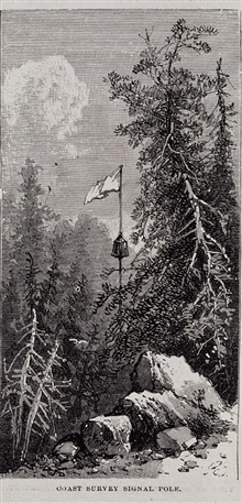 Signal pole with flag and tin cone for reflecting sunlight.Epping Plains area of Maine