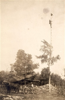 Jasper S. Bilby observing from short reconnaissance pole attached to tree.On 98th Meridian Survey.Checking for intervisibility between stations.Helping plan for necessary height of tower at station