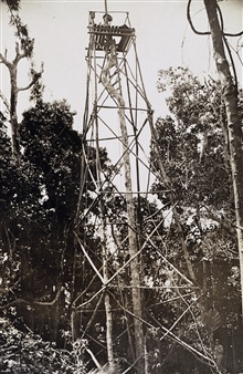 Station Gibuson - a 68 foot tree signal.Party of John F. Pratt - off of PATHFINDER