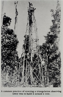 Tower built around tree in the Philippine jungle.