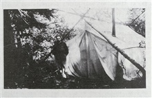 Camp in the trees.Triangulation party of William M. Scaife