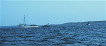 Menhaden fishing - mother vessel and purse seiner boats