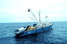 The Spanish tuna purse seiner F/V TXORI-EDER in the western Indian Ocean.Smaller vessel on the stern is secured to purse seine and when a school of tunais encountered, the small boat is launched and it helps ship encircle it.
