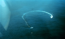 Helicopter eye view of ship pulling net in circle to capture tuna.  Workboat isin lower center of photo and is holding the end of the net.