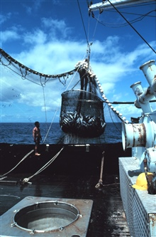 The basket load of fish is being brought out of the water and will be placeddirectly over the hole in the foreground.  The fish will be deposited in thehole which has a chute that leads directly to the freezer compartments.