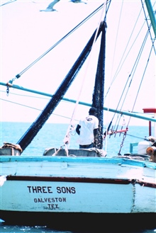 Shrimp trawling operations off the THREE SONS