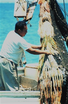 Hispanic American shrimper in the Gulf of Mexico