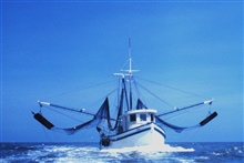 Bow view of a double-rigged shrimp trawler