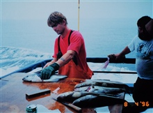 Mate filleting pollock after an offshore bottom fishing trip to Georges Bank.  Aboard the headboat YANKEE PATRIOT out of Gloucester.