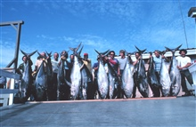 Group of anglers displaying yellowfin tuna catch after, dockside after long-range trip to Mexico.
