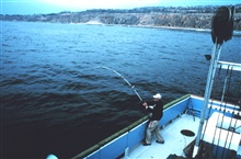 Angler fighting fish aboard charter (CPFV) vessel