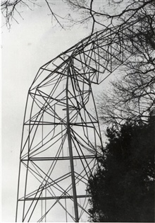 Bilby tower failure at Station Flatlick due to tornado.  Triangulation party ofE. L. Jones.
