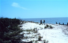 Area 2; southeast view of the bulkhead, beach and dunes.